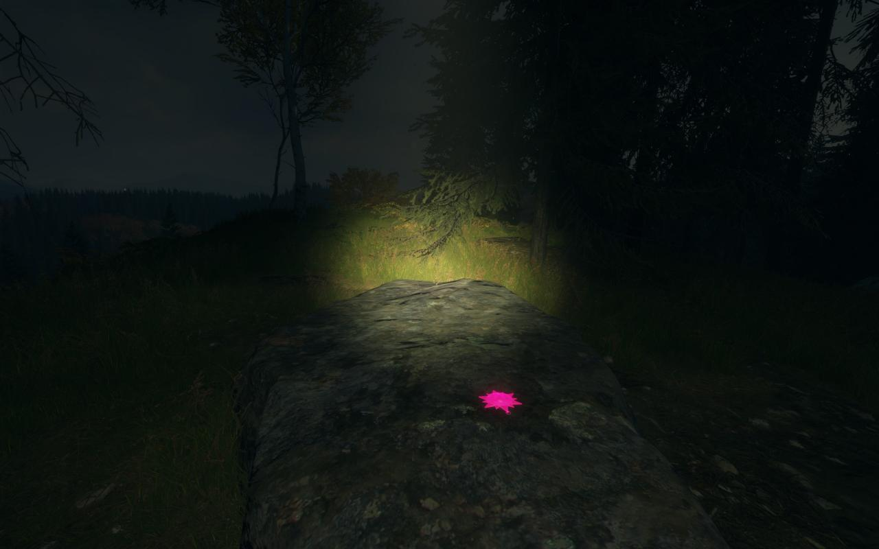 theHunter: Call of the Wild All Hirschfelden Artifacts and Sheds Locations
