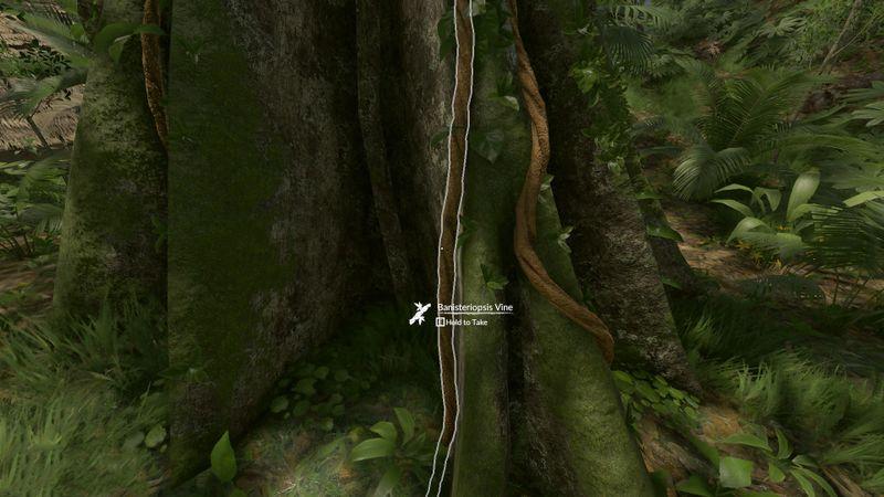 Green Hell 100% Achievement Guide