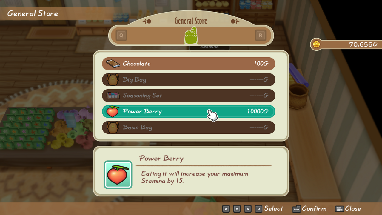 Story of Seasons: Friends of Mineral Town All Power Berries & Special Berry Location