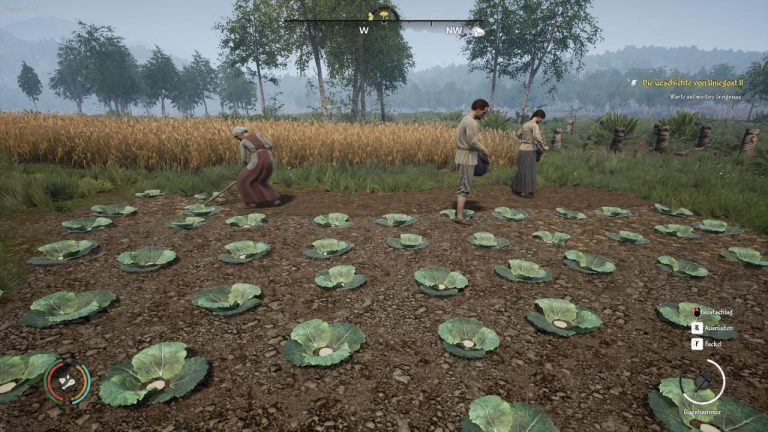 Medieval Dynasty Farm fields Guide for Effective Procedure